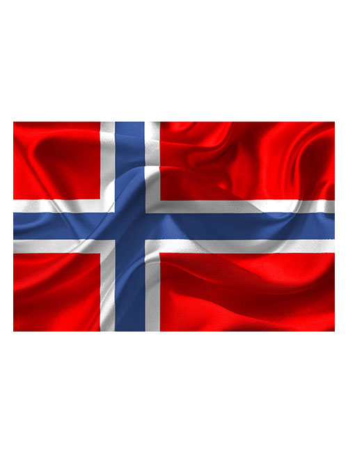 Strykemerker norsk flagg i vinden